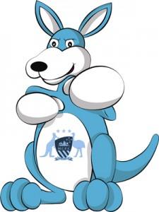 BlueRoo